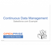 Continuous Data Management (Salesforce.com Example) – Cook Book