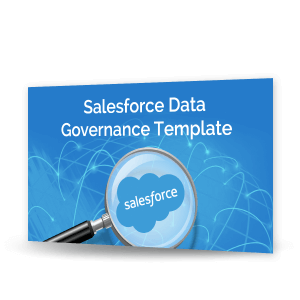 Saleforce Data Governance Template