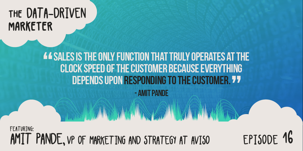 """""""Sales is the only function that truly operates at the clock speed of the customer because everything depends uponresponding to the customer."""" — Amit Pande"""